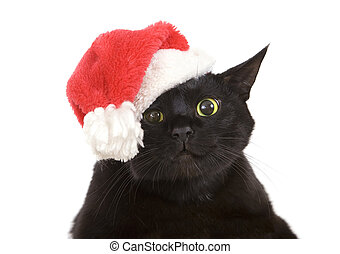 Black Cat Santa - cute christmas cat, Christmas pet with...