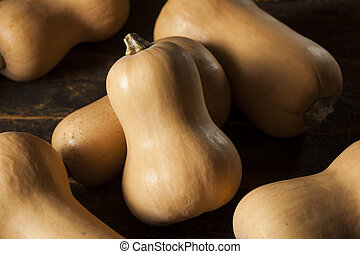 Raw Organic Butternut Squash on a Background