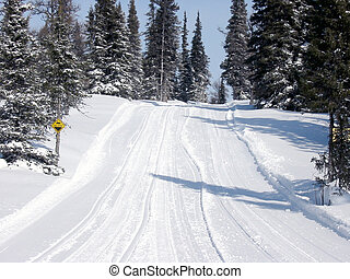 Outdoor trail in Winter used for skidoos
