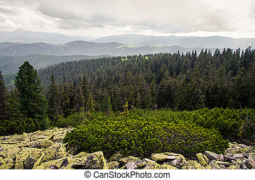 Ukrainian Carpathian Mountains