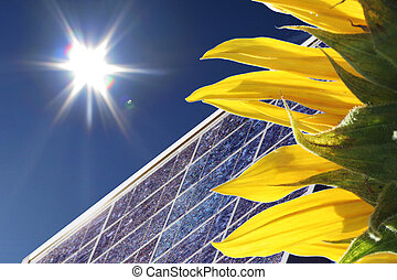 sunflower with bright sun light and blue sky and solar panel