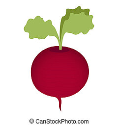 Beet isolated on a white background.