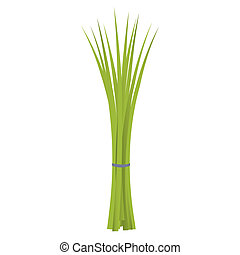Chives isolated on a white background.