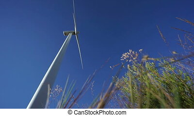 Focusing from rotating wind turbine to directly below plants...