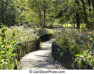 Communal Garden in Fall - Path through communal garden in a...