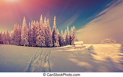 Panorama of the winter sunrise in the forest. Retro style.
