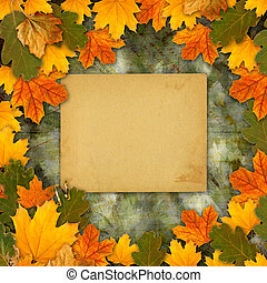 Bright multicolored autumn leaves on the abstract beautiful...