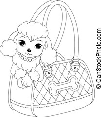 Poodle coloring page - Glamorous poodle peeking out of a...