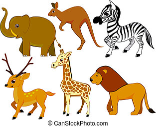 Animal cartoon - Safari animal collection