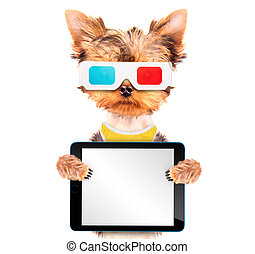 dog going to the movies with tablet pc - dog going to the...