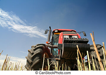 Agriculture - Tractor - Agriculture - tractor on the field...