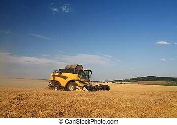 Agriculture - Combine harvester on the field