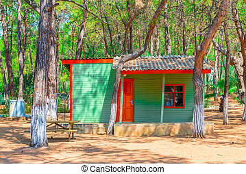 a small guest house in the coniferous forest