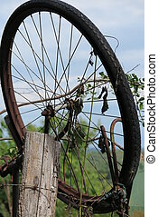 old bicycle in the meadow