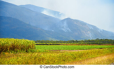 Fires in the Queensland countryside - Australia