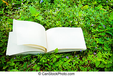 diary on the grass - diary and notebook on the grass for...