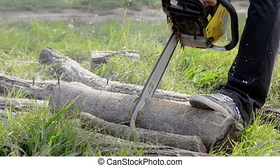 Gasoline powered professional chainsaw