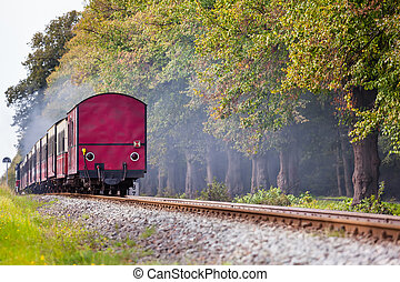 Railroad Farewell View - Back of a steam train with a red...