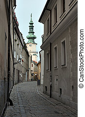 alley to Michalska brana - old alley leading to Michalska...