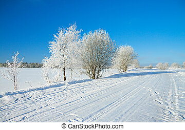 winter rural landscape with the road the forest and the blue...