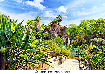 Beautiful landscape of humid tropical jungle. - Beautiful...