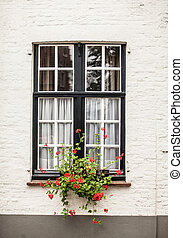 Window with garden in Brugge