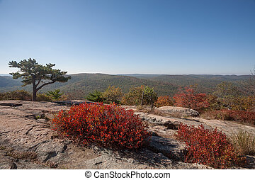 Autumn in Upstate New York - Fall colors in Bear Mountain...