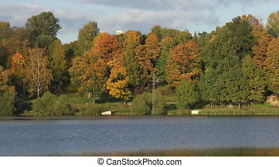 Autumn forest Lake Autumn Landscape Real time