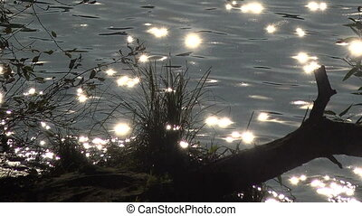 Sunbeams, reflections on the water.