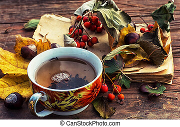 autumn colors - Cup warming autumn tea in cold weather