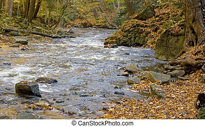 Stream at Websters Falls just outside Dundas, Ontario,...