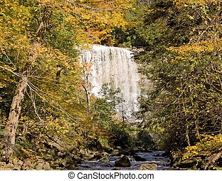 Webster\'s Falls - Webster\'s falls just outside Dundas,...