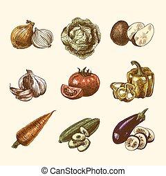 Vegetables sketch set color - Vegetable natural organic...