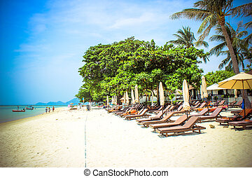 Empty sunbeds on the tropical paradise beach in Koh Samui