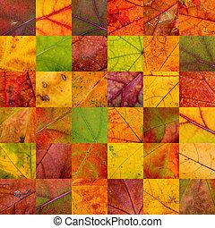 labor de retazos, otoño, hojas