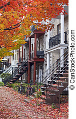 colorful neighbourhood of montreal at fall