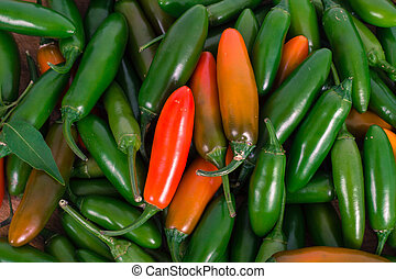 jalapeno and serrano pepper background
