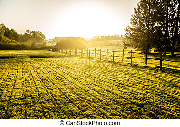 Sunrise over misty grassland with wooden fence in the foreground.