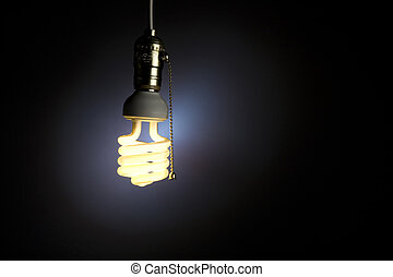 Light Bulb - A light bulb with pull chain hanging from the...