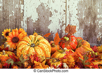Autumn display with a squash and decorative gourds and...