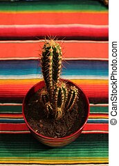 Mexican fiesta poncho rug with cactus - Traditional Mexican...