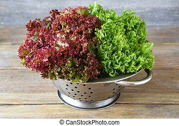 Fresh lettuce in a colander, healthy food