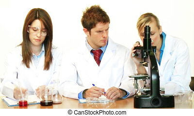 Attractive scientists working in a laboratory