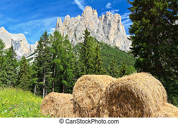 Dolomiti - alpine pasture - alpine pasture with bales of hay...