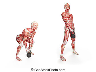 deadlift - kettlebell exercise - deadlift
