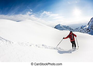 Skiing: male skier in powder snow