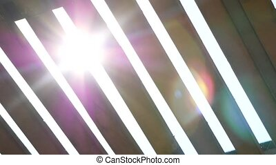 The sun shines through a fence