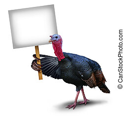 Turkey Bird Sign - Turkey bird sign concept as a...