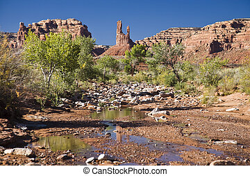Brook in Valley of the gods in Utah, USA