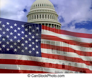 American flag on a background of the white house. PAL